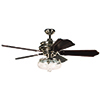 This item: Townsend Polished Nickel Ceiling Fan with Light