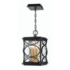 This item: Hamilton Midnight and Patina Aged Brass Four-Light Outdoor Pendant