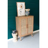 This item: Natural Two Woven Cane Door Cabinet