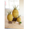 This item: Seagrass Yellow and Green Pineapple, Set of 3
