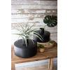 This item: Black Waxed Metal Vase, Set of Two