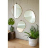 This item: Brass Framed Organic Shaped Mirror, Set of 3