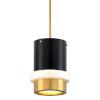 This item: Beckenham Vintage Polished Brass and Black One-Light Pendant