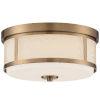 This item: Trevor Vibrant Gold 14-Inch Two-Light Flush Mount