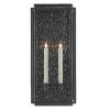 This item: Wright Midnight Two-Light Outdoor Wall Sconce