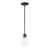 This item: Westin Matte Black One-Light Mini Pendant with Clear Glass