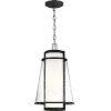 This item: Tofino Black One-Light Outdoor Hanging Pendant