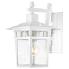 This item: Cove Neck White Finish One Light Outdoor Wall Sconce with Clear Seeded Glass