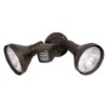 This item: Bronze Two-Light 14-Inch Wide Outdoor PAR38 Flood Light with Adjustable Swivel