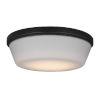 This item: Dover Oil Rubbed Bronze 11-Inch LED Fan Light Kit