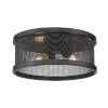 This item: Channing Matte Black Two-Light Flush Mount