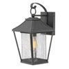 This item: Palmer Museum Black 16-Inch One-Light Outdoor Wall Sconce