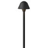 This item: Rex Textured Black 2700K LED Path Light with Clear Glass
