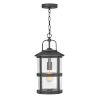 This item: Lakehouse Black One-Light Outdoor Pendant