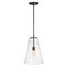 This item: Vance Satin Black One-Light Pendant