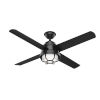 This item: Searow Matte Black 54-Inch Outdoor Two-Light LED Ceiling Fan