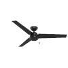 This item: Cassius Matte Black 52-Inch Outdoor Ceiling Fan
