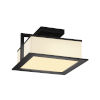 This item: Fusion Matte Black LED Flush Mount with Opal Glass