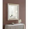 This item: Lyonesse Champagne 30-Inch Wall Mirror