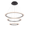 This item: Zoe Black Three-Light LED Chandelier