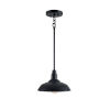 This item: Dale Black One-Light Pendant