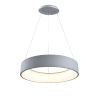 This item: Revolution Silver 24-Inch LED Pendant
