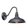 This item: Dale Black One-Light  Wall Lantern