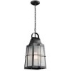 This item: Tolerand Textured Black One-Light Outdoor Hanging Pendant