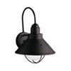 This item: Seaside Black Dark Sky Outdoor Wall Light