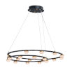 This item: Button Black and Gold 18-Light LED Suspension Pendant With Clear Acrylic Glass