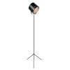 This item: Lucine Black 61-Inch One-Light Floor Lamp