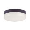 This item: Illuminaire Ii Bronze One-Light LED Flush Mount with Acrylic Shade