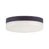 This item: Illuminaire Ii Bronze One-Light LED Flush Mount with Acrylic Shade 3000 Kelvin