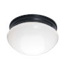 This item: Essentials 588x Black Two-Light Flush Mount