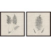 This item: Libby Langdon Modern Ferns I Neutral Framed Wall Art, Set of 2