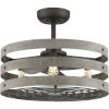 This item: P250012-143-22 Gulliver Graphite 24-Inch Three-Light LED Ceiling Fan