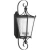 This item: Cadence Textured Black Eight-Inch One-Light Outdoor Wall Sconce with Clear Seeded Water Shade