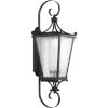 This item: Cadence Textured Black 12-Inch One-Light Outdoor Wall Sconce with Clear Seeded Water Shade