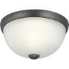This item: Graphite One-Light Flush Mount