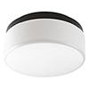 This item: P350076-020-30: Maier LED Antique Bronze Energy Star LED Flush Mount