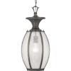 This item: Antique Bronze 9-Inch One-Light Outdoor Hanging Lantern With Transparent Seeded Glass