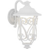 This item: White LED One-Light Outdoor Wall Lantern