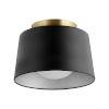 This item: Black 11-Inch One-Light Flush Mount