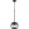 This item: Black 11-Inch One-Light Pendant
