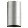 This item: Cylinder Brushed Aluminum One-Light Flush Mount