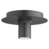 This item: Black Six-Inch One-Light Flush Mount