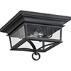 This item: Pavilion Black Two-Light Outdoor Ceiling Mount