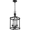 This item: Black 12-Inch Three-Light Pendant