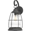 This item: Admiral Mottled Black 20-Inch One-Light Outdoor Lantern with Clear Glass