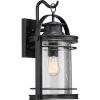 This item: Booker Mystic Black 11-Inch One-Light Outdoor Wall Lantern
